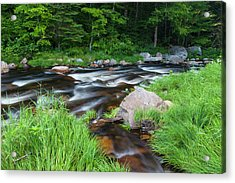 Cold Stream In Maine's Northern Forest Acrylic Print by Jerry and Marcy Monkman