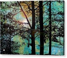 Collage2v5 Acrylic Print by Katherine Sands