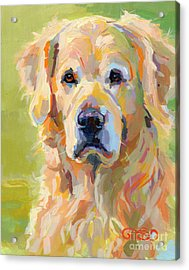 Cooper Acrylic Print by Kimberly Santini