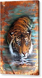 Copper Tiger II Acrylic Print