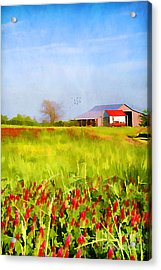Country Kind Of Spring Acrylic Print by Darren Fisher