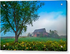 Country Morning Acrylic Print by Brian Stevens