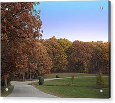 Acrylic Print featuring the photograph Country Road by Bill Woodstock