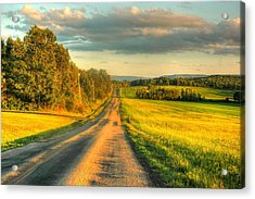 Country Road Acrylic Print by Ed Roberts