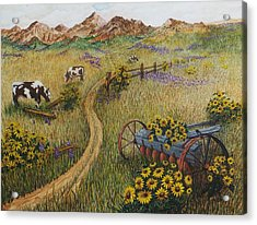 Cows Grazing Acrylic Print by Katherine Young-Beck