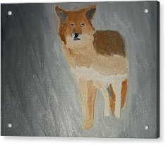 Coyote Oil Painting Acrylic Print by William Sahir House