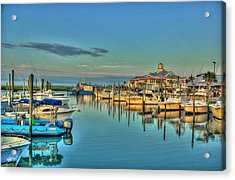 Acrylic Print featuring the photograph Crazy Sisters Marina by Ed Roberts