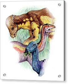 Cretaceous Herbivorous Dinosaurs Acrylic Print
