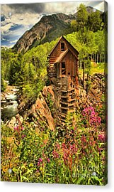 Crystal Mill Wildflowers Acrylic Print by Adam Jewell