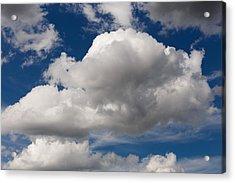 Cumulus Sky Acrylic Print