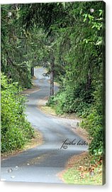 Curves Into Leadbetter Point State Park II Acrylic Print