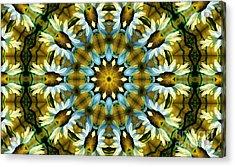 Kaleidoscope Daisy Mae Acrylic Print