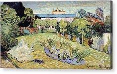 Daubigny's Garden Acrylic Print by Vincent van Gogh
