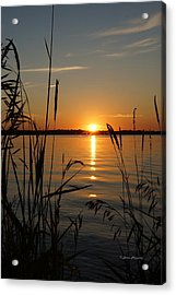 Days End Acrylic Print by Steven Clipperton