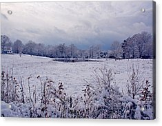 December Snow 005 Acrylic Print by Andy Lawless