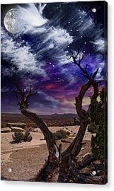 Acrylic Print featuring the digital art Desert Tree by Bruce Rolff