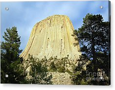 Acrylic Print featuring the photograph Devils Tower National Monument Wyoming Usa by Shawn O'Brien