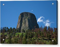 Devil's Tower Acrylic Print