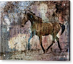 Dissolution Acrylic Print by Judy Wood