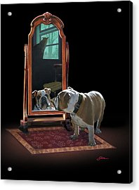Double Trouble Acrylic Print by Harold Shull