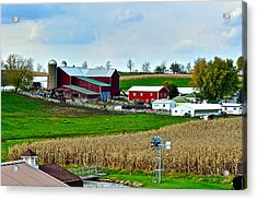 Down On The Farm Acrylic Print by Frozen in Time Fine Art Photography