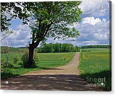 Down The Lane Acrylic Print by Christian Mattison