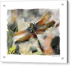 Dragonfly Garden Acrylic Print by Bob Salo