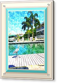 Dry Dock Bird Walk - Digitally Framed Acrylic Print by Susan Molnar