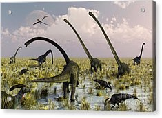Duckbill Dinosaurs And Large Sauropods Acrylic Print by Mark Stevenson