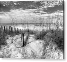 Dune Fences Acrylic Print by Debra and Dave Vanderlaan