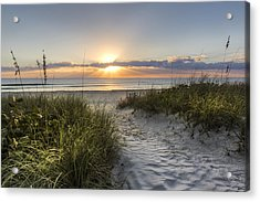 Dune Trail Acrylic Print by Debra and Dave Vanderlaan