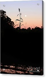 Dusk And Summer Acrylic Print by Jorgo Photography - Wall Art Gallery