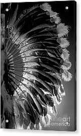 Eagle Feathers Acrylic Print