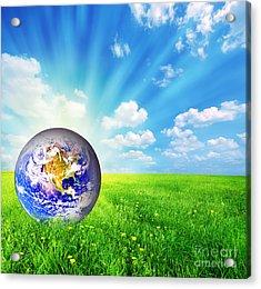 Earth Globe On Green Grass Acrylic Print by Michal Bednarek
