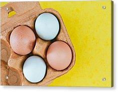 Eggs Acrylic Print by Tom Gowanlock