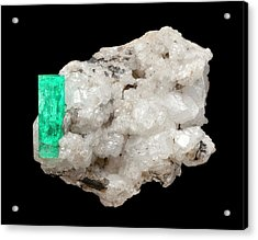 Emerald Acrylic Print by Natural History Museum, London