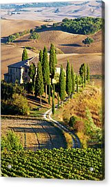 Europe, Italy, Tuscany, San Quirico Acrylic Print