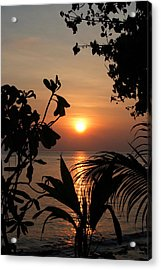 Acrylic Print featuring the photograph Evening Sun by Elizabeth Lock