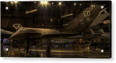 F-117 Stealth Fighter Acrylic Print