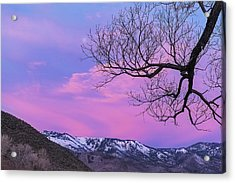 Fading Winter Moon Acrylic Print by Nancy Marie Ricketts