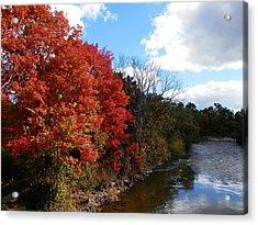 Fall At The Credit River Acrylic Print