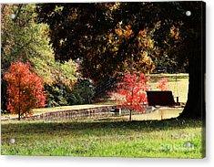 Fall Colors Acrylic Print by Jinx Farmer