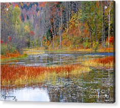 Fall Colors Acrylic Print by Mariarosa Rockefeller