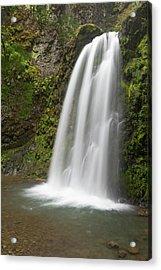Fall Creek Falls, Oregon Acrylic Print
