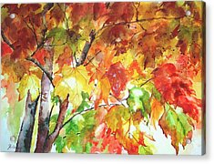 Fall Folliage  Acrylic Print