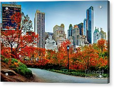 Fall In Central Park Acrylic Print by Az Jackson