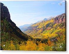 Fall In Telluride Acrylic Print