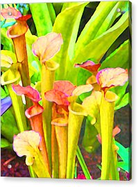 Fantasy Flowers 9 Acrylic Print by Margaret Saheed
