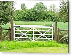 Farm Gate Acrylic Print by Tom Gowanlock