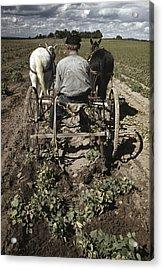 Farming, 1940 Acrylic Print